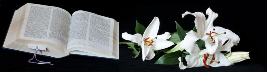 Bible and Lillies